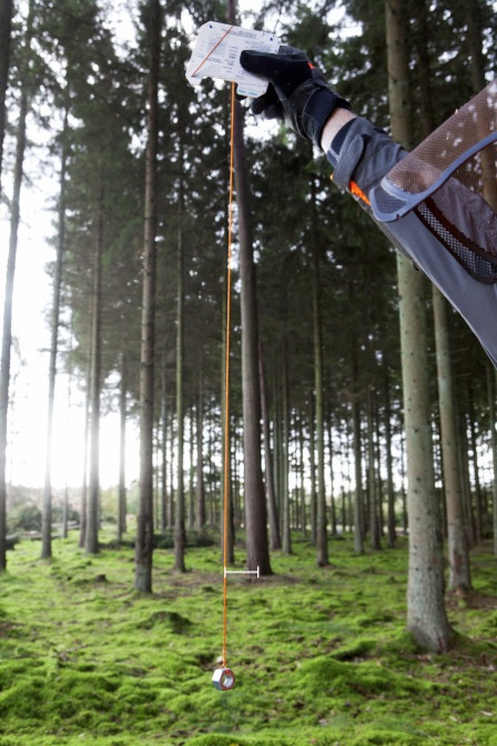 Measure the lean of the tree