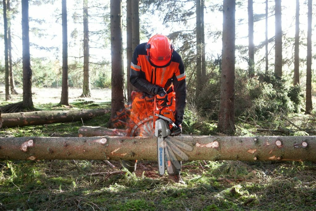 Forestry worker limbing, resting the saw body against the trunk and using the saw as a lever