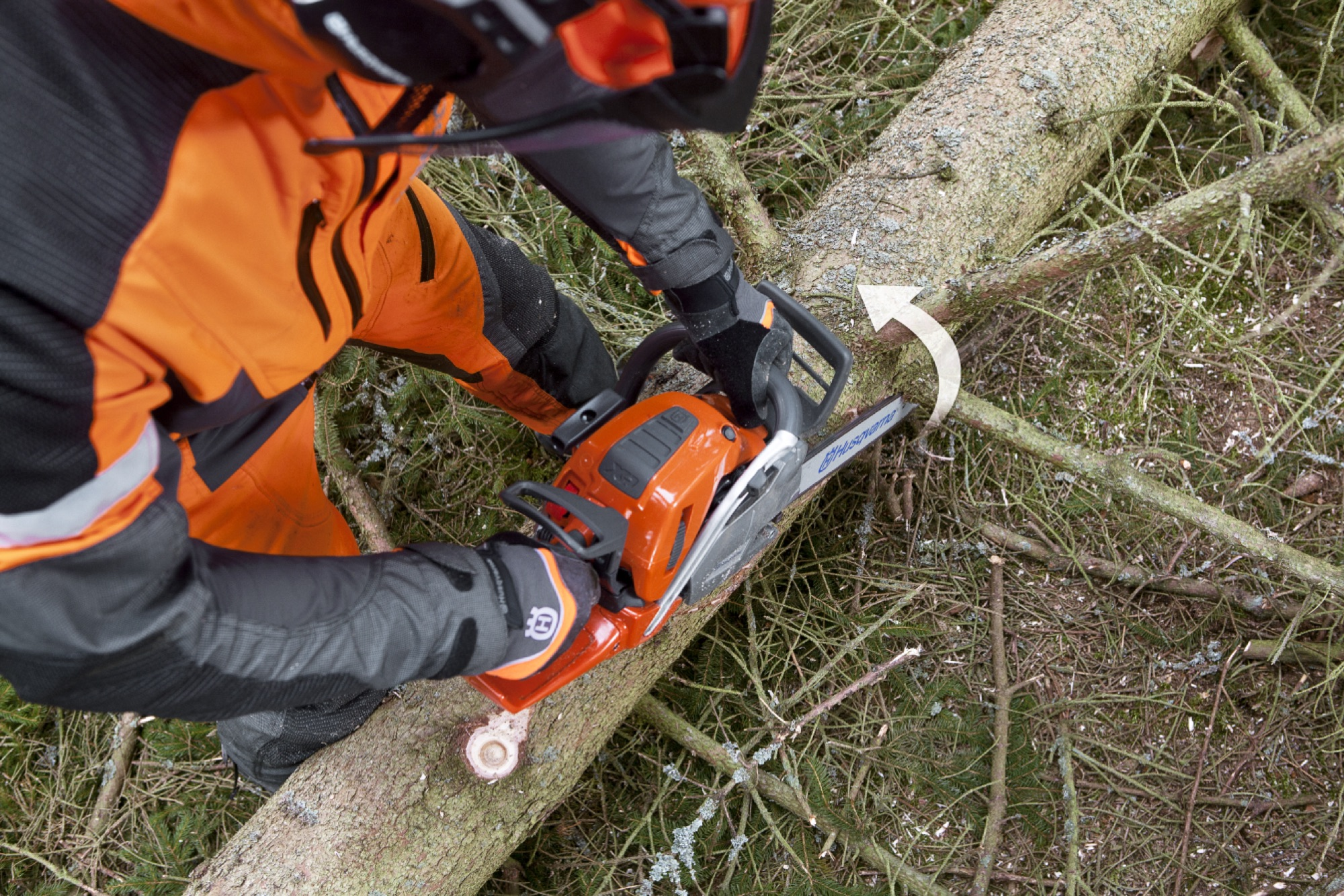 Seen from above: forestry worker limbing a branch from below at the right side of the tree
