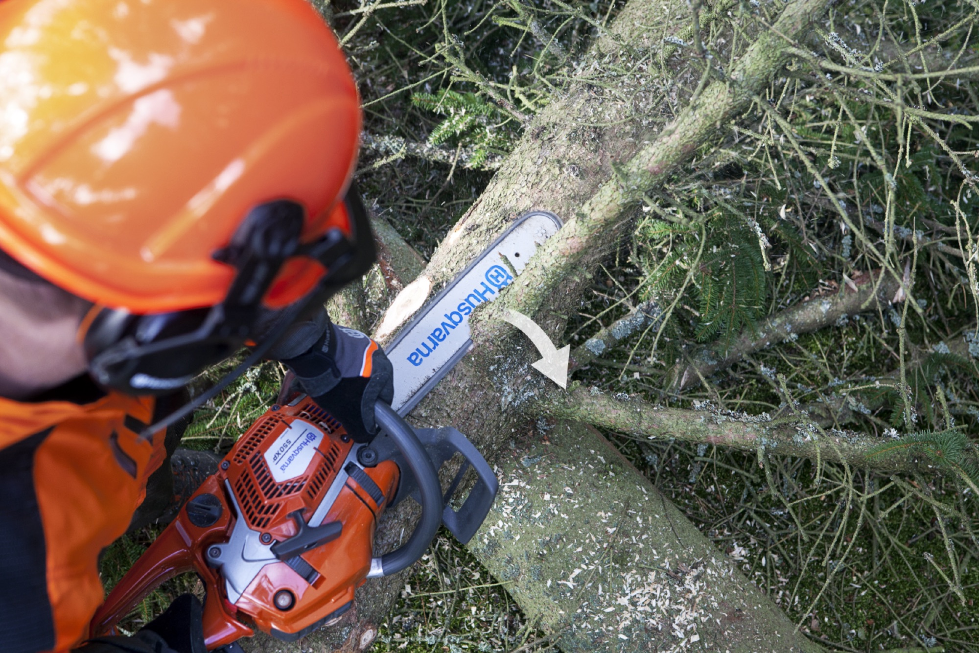 Forestry working limbing a branch at the top side of the tree again, cutting from left to right