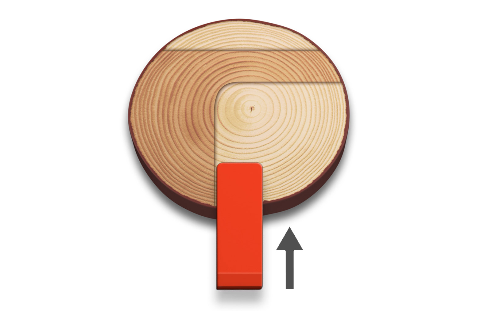 Illustration showing how a wedge is used to secure the tree
